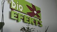 """""""Bioefekts"""": Pielaiko Telpu Māju Dārzu"""