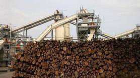Aizkraukles iedzīvotāji iebilst pret koksnes žāvēšanas kalšu izbūvi māju tuvumā