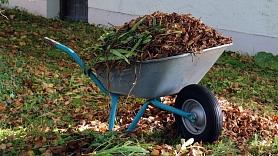 Svarīgi ieteikumi, kā sagatavot dārzu ziemai