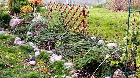 Kā ieziemot dārzu un dārza instrumentus?