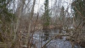 Meža un lauksaimniecības zemes vērtēšana