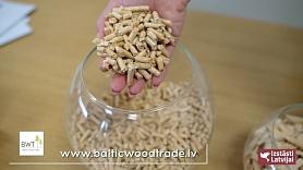 """SIA """"Baltic Wood Trade"""": Pielaiko telpu, māju, dārzu"""