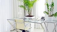 5 padomi ilgtspējīga biroja iekārtošanai