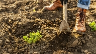 Kā sagatavot dārza augsni rudenim? Iesaka augu speciāliste