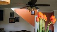 Atsvaidzini māju pavasarim
