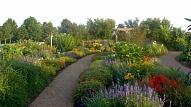 Dārza lielums un konfigurācija