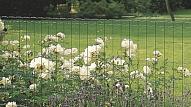 Dārza apžogošana – skaistumam un drošībai