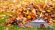 Septiņi rudens dārza darbi