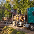 Mežvedēja pakalpojumi Jēkabpils