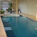 Decorative stones for pool room finishing