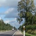 Дорожные столбики, столбики для дорог
