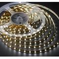 LED lmapas