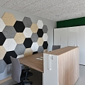 CEWOOD acoustic, design walls and ceiling panels (fibrolite) for office space