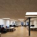 CEWOOD akustiskās, dizaina griestu apdares plātnes (fibrolīts) Dižozols birojā